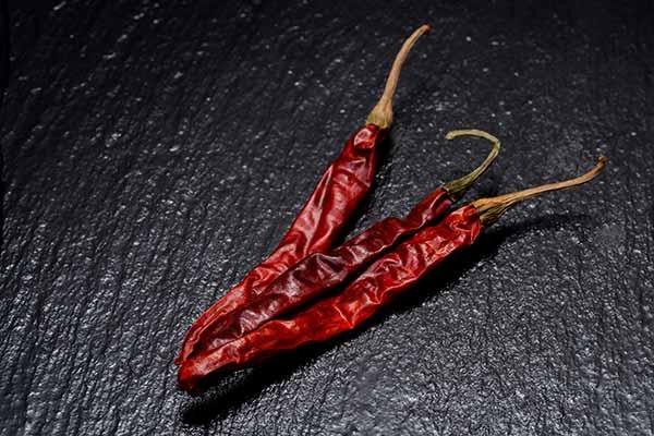 Capsicum Chile de Arbol Mexican chili pepper