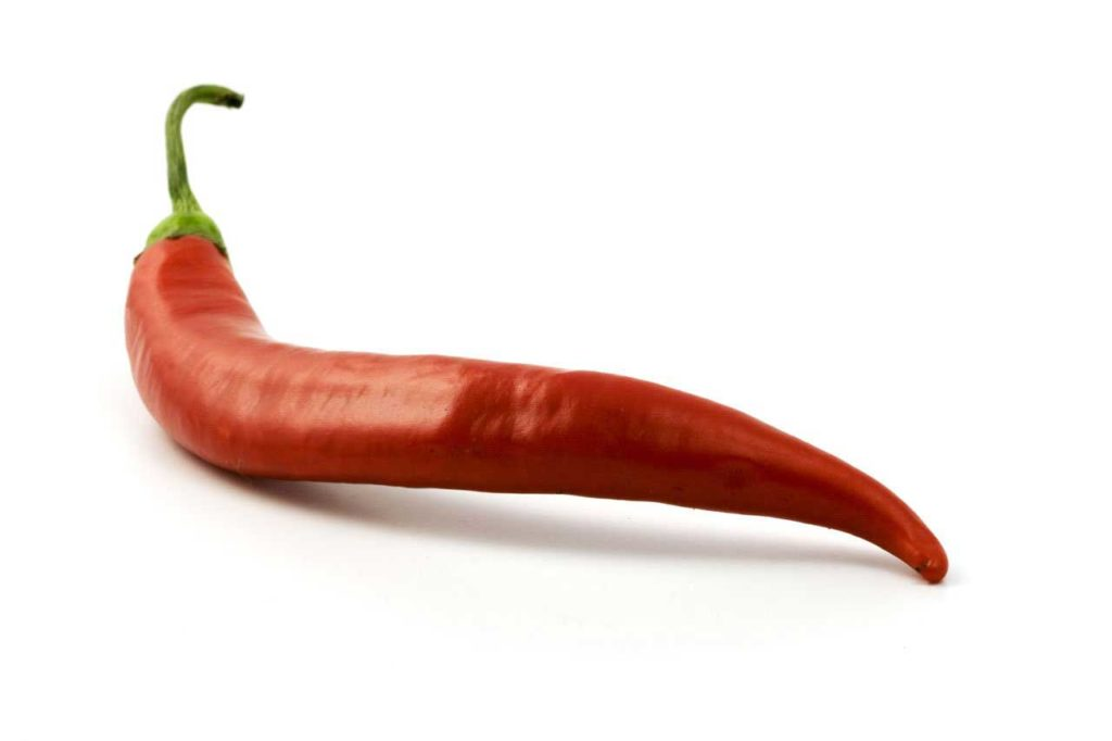 red chile pepper capsicum chili