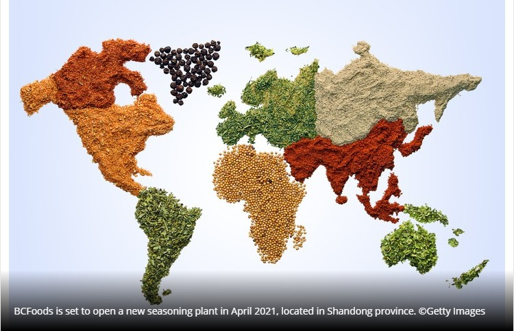 World map with spices