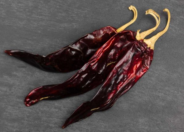 Capsicum guajillo chile chili from Mexico