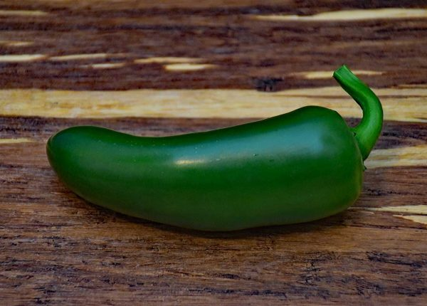 Jalapeño chile Mexican chili pepper